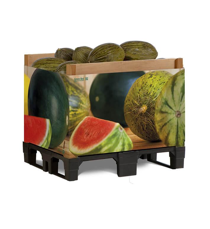 icono melon