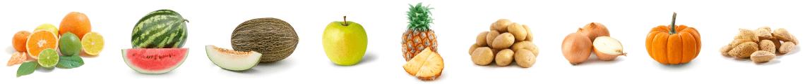 banner frutas