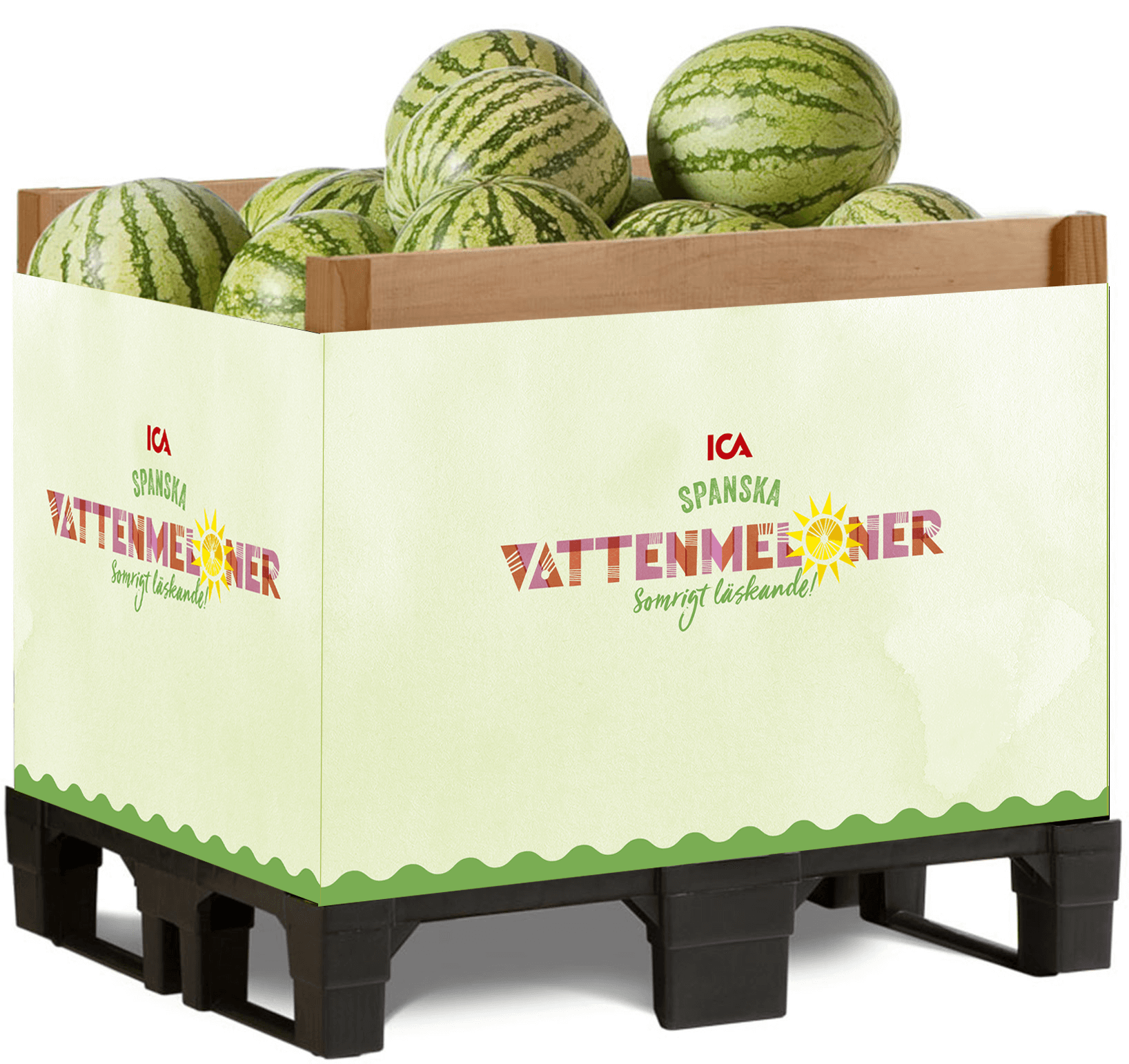 g70 melon