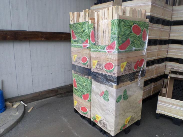 greenbox preparación