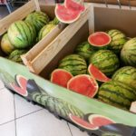 campaña sandia y melon greenbox