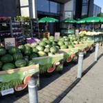fruta green box